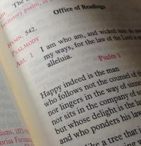 Catholic Apptitude | A testament to digital ministry | The