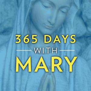 365daysmary