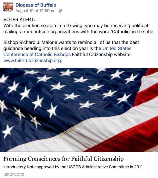 DOBuffalo-political action alert-FB screenshot.jpg